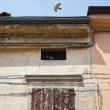 Alessio-Di-Franco-Fotografo-Fotografia-Gualtieri-3
