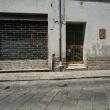 Alessio-Di-Franco-Fotografo-Fotografia-Gualtieri-6