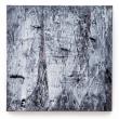 RELATIVITÀ – 2016, acrilico su tela, 80x80cm