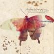 Art-like-a-butterfly