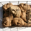 Donne-Stracciate-Cages-of-life
