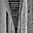 Mostra-di-Alessandro-Bassani-Festival-Europeo-della-Fotografia-9