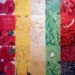 colori-della-natura-olio-su-tela-100x100-2017