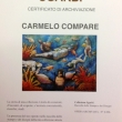 Carmelo-Compare-9-copia-1
