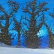 Svegliarsi-con-la-neve-olio-su-tela-50x40-cm