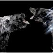 Can-you-feel-my-anger-40800-Crystals-from-Swarovsk-su-plexiglass-80x150-cm-2018