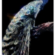 Kingly-31700-Crystals-from-Swarovski®-135x85-cm.-2017