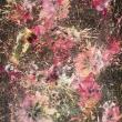 29-21-marzo-arriva-la-primavera-acrilico-materico-su-tela-70x100