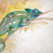 CAMALEONTE-acquerello-formato-A5-2012