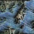 Peruvian-Streams-02