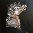 Testa-D-cavallo_-oil-on-canvasboard_-cm-24x30