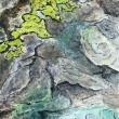 29-_Rhizocarpon_-2019-cm-30x40-acrilico-e-olio-su-tela-copia