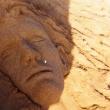 30-testa-scultura-sabbia