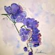 Barbara-Ricchebuono-opere-21