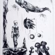 misteri-marini-puntasecca-50x35