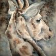 1-Giraffa-acquerello-40x30