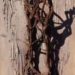 LE RADICI DELL'ESSERE 2 - Tavola, 2016, 180x60cm